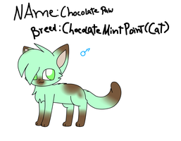 Adoptable Auction: Chocolate Paw .:closed: by MillyTheTigerKitten