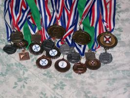 Tis a collection of medals by Computer-Turret