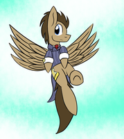 Wings of a Timelord by MetalAura