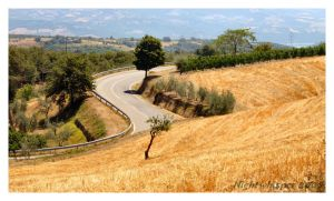 Umbria 02 - Road by Thedrjazz
