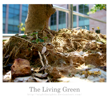 The Living Green by nightknights