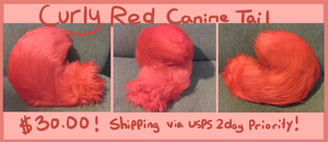 Curly Red Tail SOLD. by shibekind