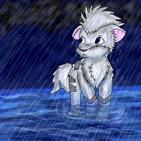 The Rain by racingwolf