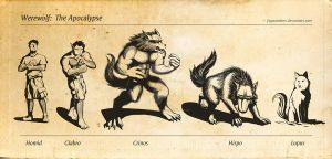 Werewolf: The Apocalypse -Garou Forms- by Jiggsokeken