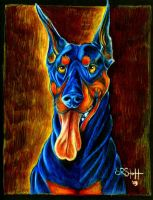 Doberman ECHO... by paleWOLF