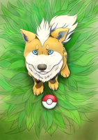 A wild Growlithe appeared! by dazedog