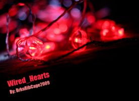 Wired_Hearts by BrknRib