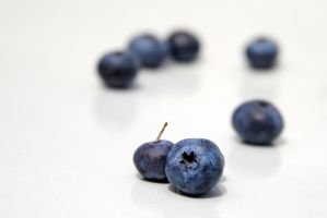 blueberries 3 by LucieG-Stock