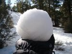 My Snowball by stephuhnoids