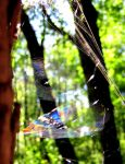 Prismatic Webs by TaterBiscit