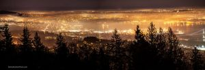 Foggy Vancouver by Bartonbo