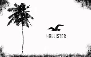 Grunge Hollister by elliot26