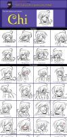 The Character Expression Meme by Lily-in-Leather