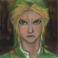 Hero of Time by bienmexicano
