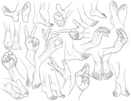 Hand and Foot Studies by gntlemanartist