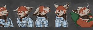 Commission: Sigurd's Expression Sheet by Temiree