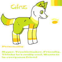 Citrus Ref by DarkNyra