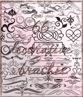 66 decorative brushes by Lyotta