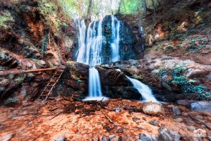 Waterfall of wisdom by Bojkovski
