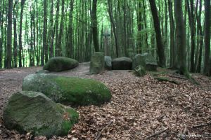 Nationalpark Jasmund 3 by bluesgrass