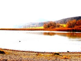 landscapes in autumn by sofary