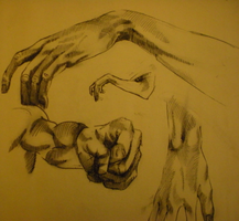 Hands... by 29boby