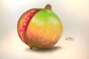 Pomegranate by PatyKasagai