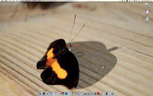My Boring but Clean Desktop by headsno2