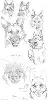 GSD tutorial and sketches by 25Nanao16