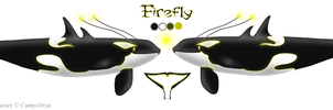 Firefly Reference Sheet by AnoOrca