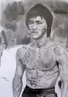 Bruce Lee - Cross Hatch by Jon-Wyatt