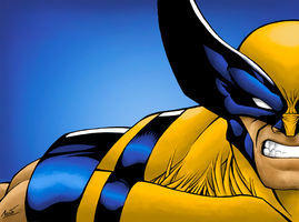 Wolverine Color by lucasgomesdesouza