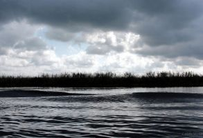 Waves in the Danube by linde-mona