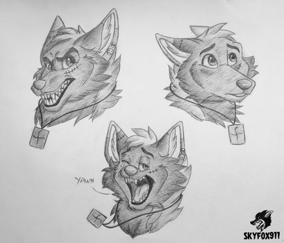 Expression Sheet 1 by skyfox911