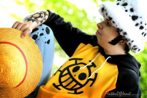 I won't abandon you | Trafalgar Law I by MatterOfHeart