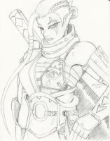 $15 Sketch Hyrule Warriors Impa by Bfetish