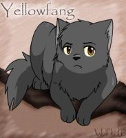 Yellowfang by Wolfkid66