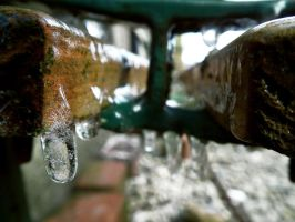 icicles by harrietbaxter