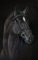 My first pastel by Le-laa