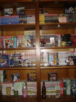 My Manga Collection 2.0 by Peter-kun