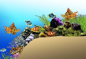 Coral Reef by paragraphworld