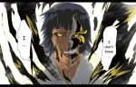 Soi Fon for Shiroikumo90 by CheshFire