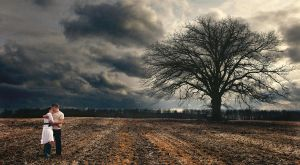 In the Feild by chrisbstacey