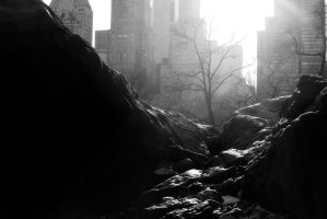 NYC Central Park by Omega300m