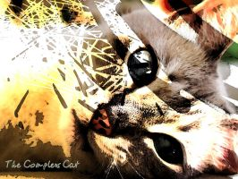 The Complex Cat by angelwillz