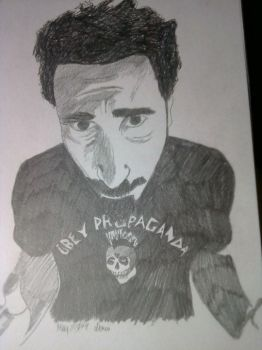 Serj by anotherheartcalls