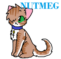 Nutmeg by Larkflame
