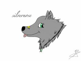 silvernose by Aaloka