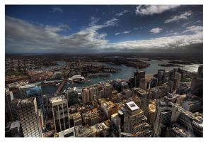 - view from Sydney Tower 03 - by robertodecampos