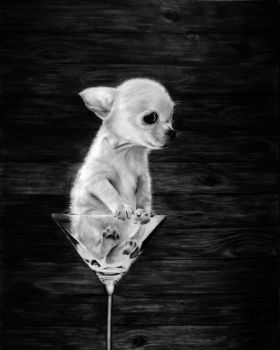Chihuahua Drawing by desiangel1